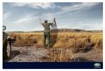 land-rover-grassland